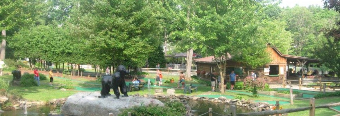 Cook Forest Fun Park