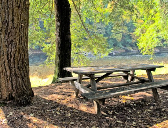 Campground Rules, Regulations & More Info